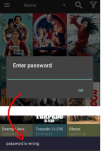 Password to Restrict Viewing Category - Cinema HD